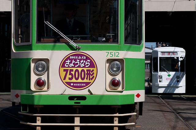 都電 7500形 7512号車と 花電車 花100号車