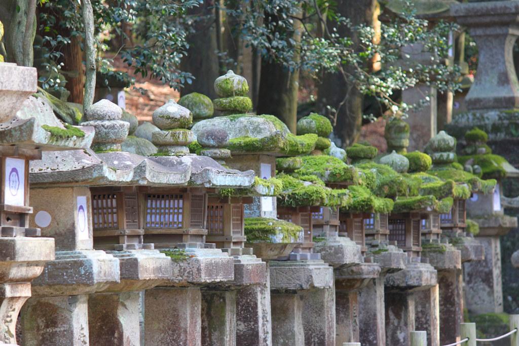 Nara Guide (26)