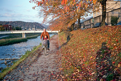 Kyoto_20101020_Pro400H-Roll-15_25 (Lordcolus) Tags: family people color film bicycle yellow japan river leaf kid kyoto snapshot contax negative 京都 vehicle 日本 fujifilm t3 dyke contaxt3 pro400h 洛北 門外漢的京都 一個人的旅行 travelalone nikonsupercoolscan9000ed 左京區
