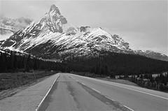 Icefields Parkway (Guido Havelaar) Tags: blackandwhite bw canada monochrome blackwhite jasper scenic monotone alberta banff schwarzweiss pretoebranco montanhas noirblanc gebirge icefieldsparkway canadianlandscape  canadianmountains  neroeblanco canadatravel canadatourism