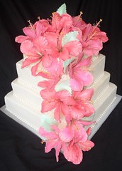 "Hibiscus wedding cake • <a style=""font-size:0.8em;"" href=""http://www.flickr.com/photos/60584691@N02/5524767621/"" target=""_blank"">View on Flickr</a>"