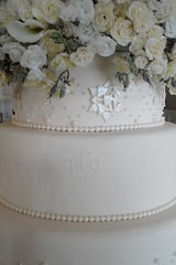 "Winter wedding cake closeup • <a style=""font-size:0.8em;"" href=""http://www.flickr.com/photos/60584691@N02/5525359882/"" target=""_blank"">View on Flickr</a>"