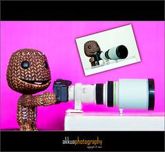 Sackboy's going into Bird Photography (AK Kua) Tags: japan canon photography eos mini jp dslr 2470l 500d danbo amzon sackboy danboard akkua