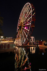 Ferris Wheel at Disney (DigiPhotos) Tags: california reflection night fun ride ferris disney