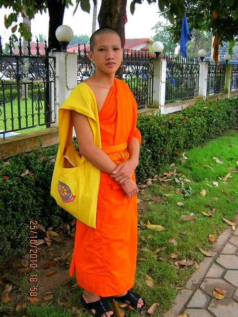 Novice Young Monk