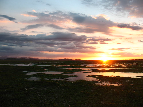 sunset over Palo Verde marshlands