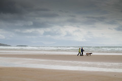 Aberffraw (alancookson) Tags: fujixt1120916 beach sea sky aberffraw dog dogwalker
