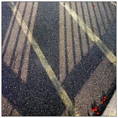 Les baies rouges (Pascal.M (bong.13)) Tags: pujaut france provence lignes lumire ombre gard graphisme graphique sonyrx100 street soleil abstrait