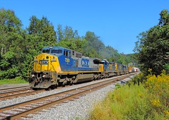 CSX 7351, 8823, 8622, 8666 (Trains & Trails) Tags: goldenrod ragweed september csx train railroad ge widecab q39421 c408w generalelectric yn2 engine locomotive diesel transportation brightfuture 7351 connellsville pennsylvania fayettecounty