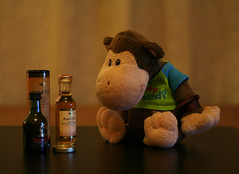 363-365 Chunky sized whisky (Chunky van Monkey) Tags: birthday monkey bottles size hide stuffedanimal present whisky chunky sized 365daysproject