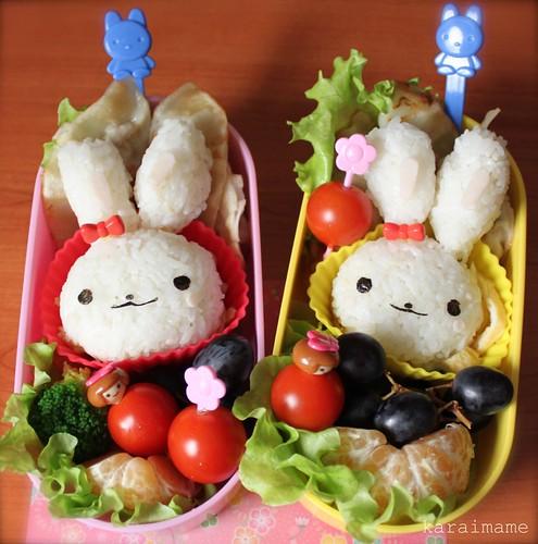 Gyoza bento - bunnies