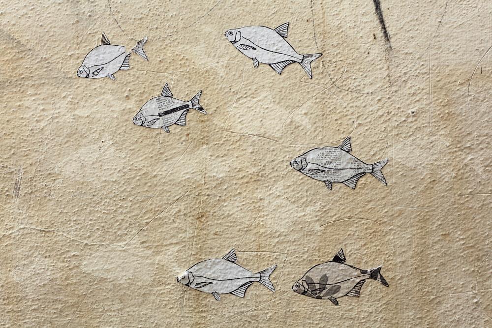 street art in Český Krumlov 1