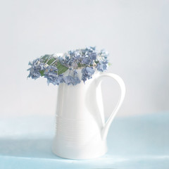 Progression (borealnz) Tags: old stilllife white flower decay pastel pale jug wilted hydrangea arrangment pastitsbest borealnz