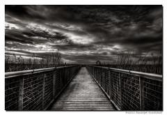 (Randolph Knackstedt) Tags: california santa clara bridge sunset sky blackandwhite bw white black slr monochrome silhouette clouds canon silver landscape photography delete2 bay photo blackwhite high raw dynamic delete3 monochromatic delete delete4 save tokina explore adobe area nik norcal grayscale range hdr highdynamicrange randolph lightroom hss dpr potn photomatix 1116 photographyonthenet adobelightroom rjx hdrsoft cs5 efex 40d canon40d tokina1116 knackstedt tokina111628 photoartbloggroup hptss digitalgrin