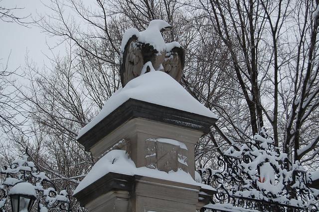 Princeton snow 2011 011