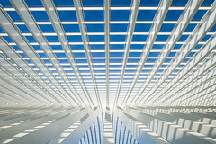 \ Escape / (Geoffrey Gilson) Tags: blue mars white abstract lines station 30 architecture modern train escape belgium structure minimal calatrava geoffrey simple liege seconds gilson thirty greatphotographers guillemins thisiswar canoneos7d wwwgeoffreygilsonnet