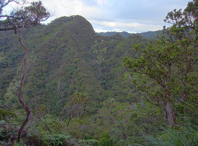 AIea Ridge 01_HDR4