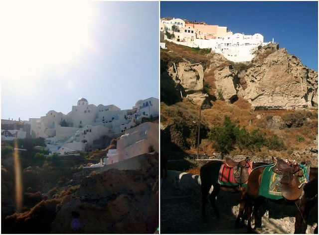 greece - donkey rides on cliffs in santorini