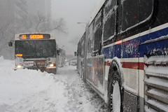 Sharin' Sheridan (Explored 2/02/2011) (Flint Foto Factory) Tags: city morning blue winter red urban white snow chicago buses weather flickr cta north historic explore intersection february blizzard winds epic trafficjam edgewater drift thorndale 151 sheridanrd chicagotransitauthority proportions inclement impasse 2011 thundersnow explored snowpocalyse