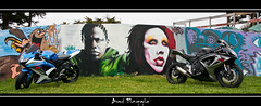 050211_23 copy (Biraud-photographie.com) Tags: graffiti gun tag skatepark 600 skate moto graff k6 k9 gsxr urbain vende 750 suzukigsxr sportive stgillescroixdevie canon1785mmisusm canoneos40d oula85 biraudphotographie
