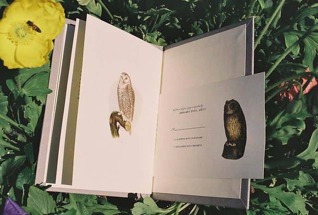 owls wedding invitation