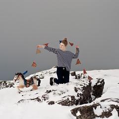 hreindýrið, gæsin og hesturinn (júlía ∆) Tags: sky horse snow dark 50mm iceland nikon triangle stripes flag f18 reykjavík vala d90 júlíavala