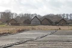 Die Wikinger Häuser von Haithabu, von der Landebrücke aus gesehen - WHH 08-02-2011