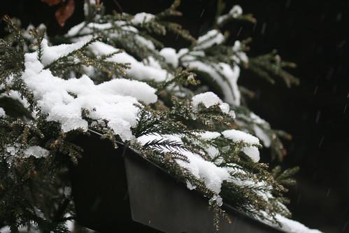 Nieve en Japón 2011