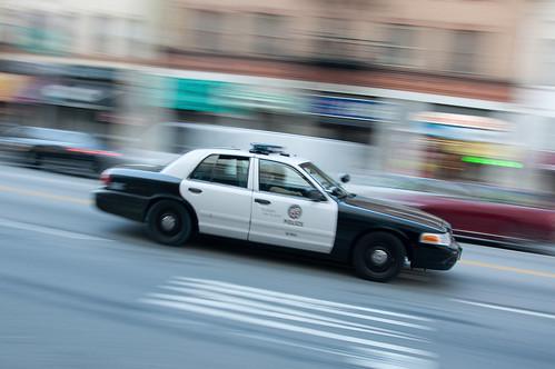 LAPD (45/365)