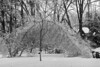 hell freezes over (nosha) Tags: winter red storm ice beautiful beauty photography hell lightroom 2011 nosha 28300mmf3556 freezesover nikond300