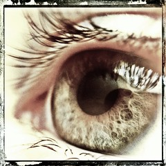 eye (with iPhone macro lens) (Emily Bemily) Tags: cameraphone with an smartphone mobilephone apps iphone flickup photography 4 rose taken camera mobile phone emily smart iphonegraphy iphone iphone iphoneography iphoneographer bemily