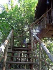 100_0176 (travellersai) Tags: kerala treehouse wayanad teaestate wildboar bandipur chital vythri banasuradam soojiparafalls streamvalleyresorts