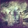 Quinta da Peça (II) (Transmontano) Tags: tree textura portugal photoshop arvores legacy soe texturas textured tistheseason bragança braganca embrujo vilaflor coth idream xoox itsawonderfulworld mywinners abigfave specialtouch anawesomeshot flickrdiamond theunforgettablepictures ilustrarportugal sérieouro spiritofphotography tatot colorsofthesoul doubledragonawards dragondaggerawards artofimages artistictreasurechest magicunicornverybest magicunicornmasterpiece sailsevenseas addvf iniciaticaward imagofabulae portugalmagico magiayfotografia mygearandme