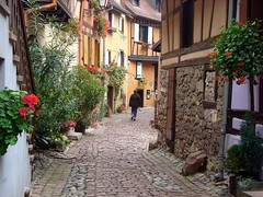 Dans une rue d'Eguisheim  A street in Eguisheim (Michele*mp) Tags: street flowers france fleurs october europe village bottles cobblestones alsace rue halftimbered octob