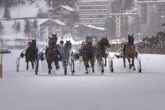 The mad rush (Emanuele Spano') Tags: saint canon lago racing neve svizzera moritz alpi cavalli corsa ghiaccio engadina whiteturf