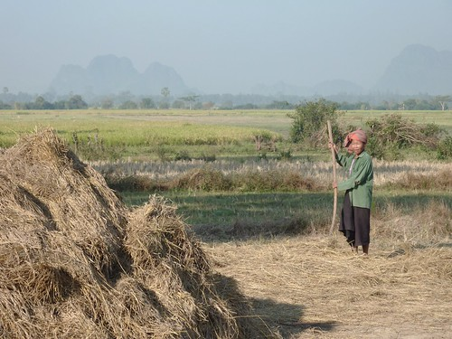 Hpa-An-Region-Campagne (5)