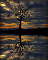 Reflection (ChristopherLeeHewitt (Away)) Tags: blue trees winter light sunset red sky orange lake mountains reflection tree nature water silhouette clouds canon landscape evening northcarolina oldtree blueridgemountains