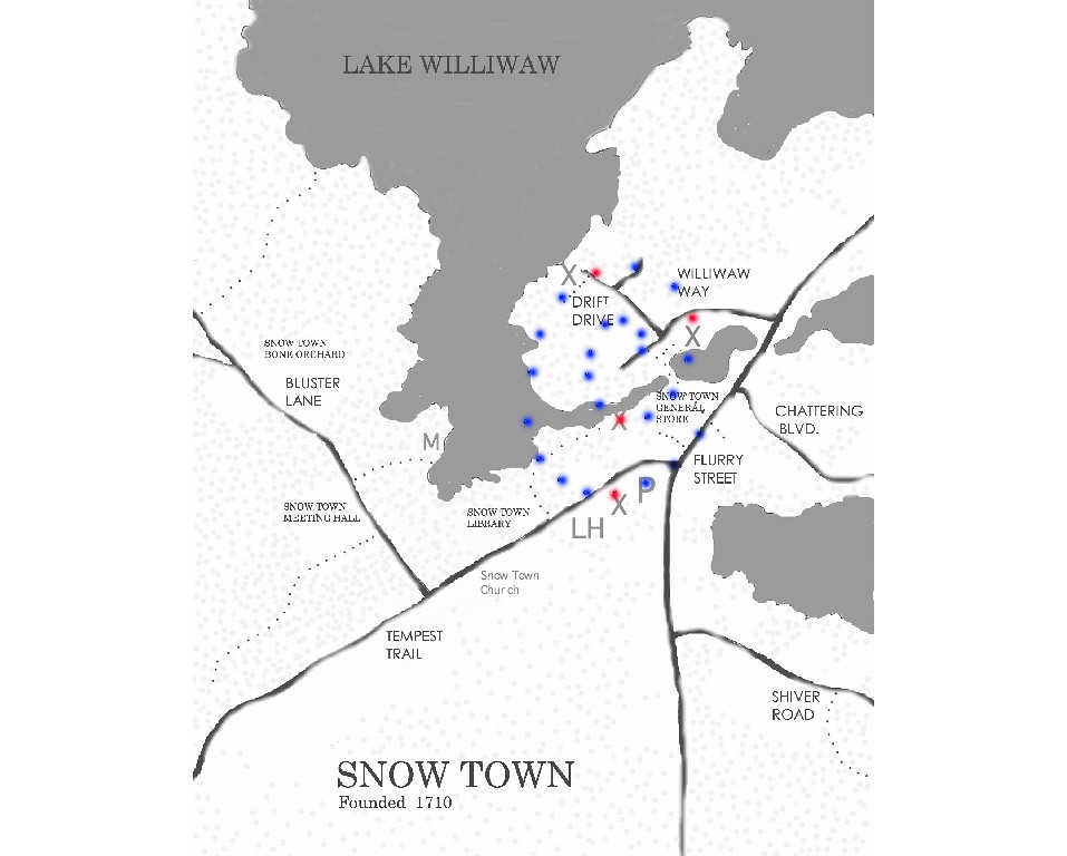 snowtown copy
