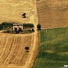 Rural Landscape - Marche, Italy (Osvaldo_Zoom) Tags: italy house film rural square landscape slide fields ektachrome marche macerata olympusom4 naturepoetry montelupone absolutegoldenmasterpiece