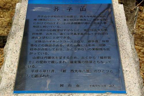 芥子山 #3