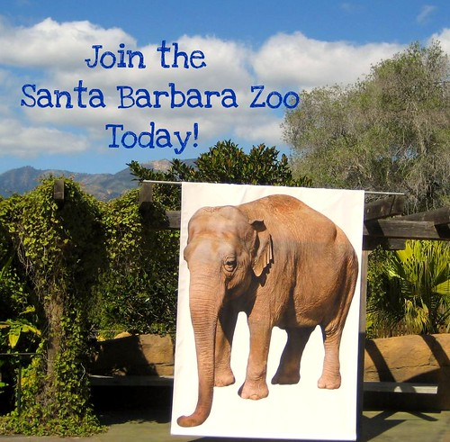 Join the Santa Barbara Zoo
