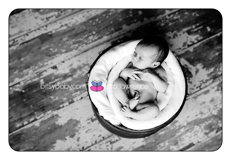 Bitsy Baby Newborn Photography 022