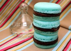 Mint Chocolate Chip French Macaron Tart Melts (CandleConfections) Tags: brown green cookies handmade sweets etsy fauxfood fauxdessert