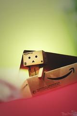 huayemm... where am i? (M3R) Tags: stilllife toy box stuff immobile amaze cardbox sortof danbo canonef50mmf14usm amazoncojp danboard