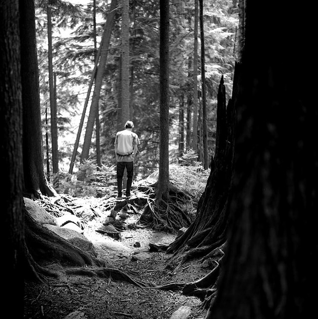 will in forest