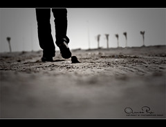 ! (Abeer Hussein) Tags: canon  450d