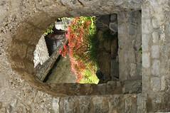 Montreux 3.6.2008 (116) (carajma) Tags: reisen sommer fenster blumen verona zuerich ferien balkone gardasee fruehling erker tueren eingaenge blumenkistli