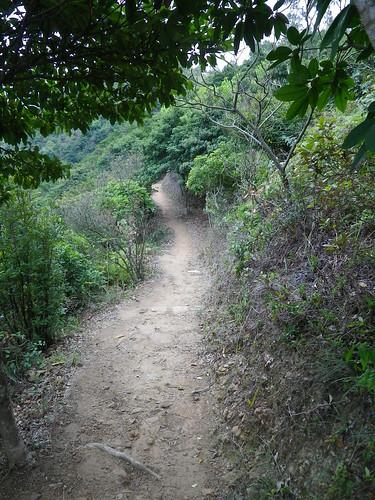 09/03/2011 Slow & Easy Trail Run
