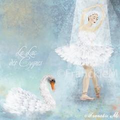 Le Lac des Cygnes (Fleur de Lotus) Tags: ballet illustration swan ballerina dancer swanlake cygne digitalillustration lelacdescygnes