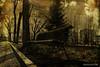 """Volverán los enamorados (osolev) Tags: madrid park parque españa texture textura bench spain europa europe banco urbana mobiliariourbano textured parquedelabombilla mobiliario labombilla ltytr2 ltytr1 texturizada osolev tatot """"flickraward"""" skeletalmess"""
